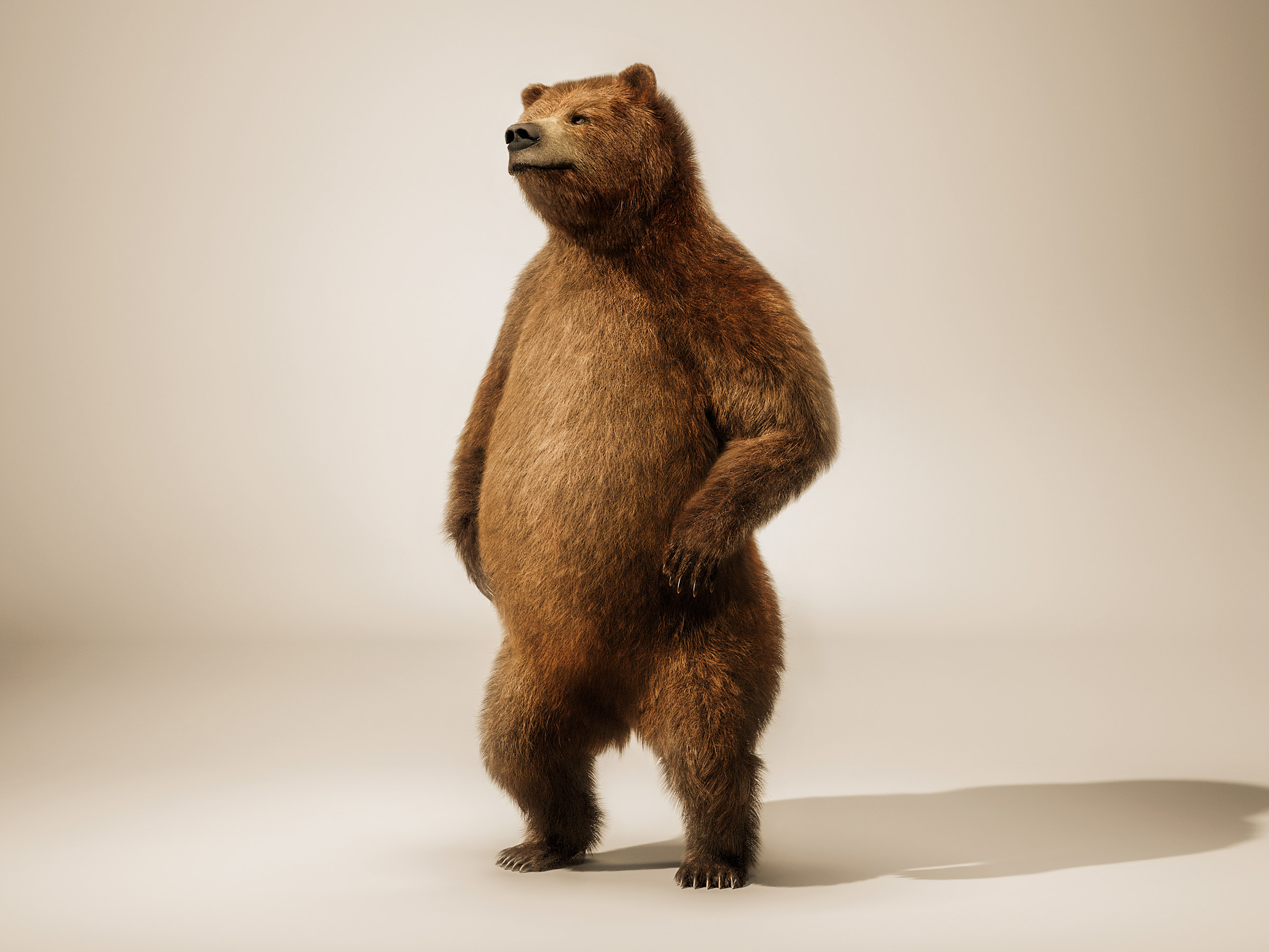 brown_bear_standing_tank_cgi_london_post_production